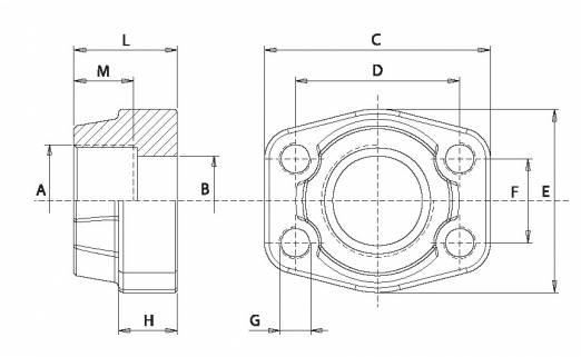 SAE screw-in counter flange 6000 PSI DFTG - BSP female